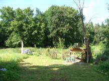 Wiese und Obstgarten